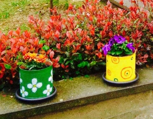 Barattoli colorati per piante